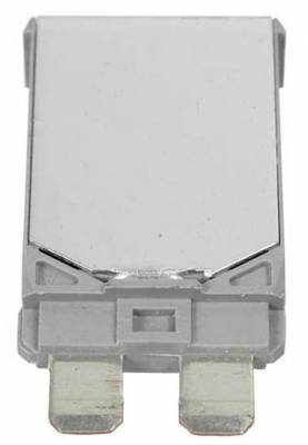 AUTOMOTIVE - Electrical - Circuit Breakers & Fuses